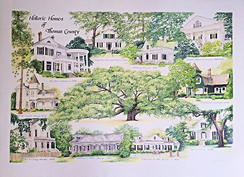 Historic Houses of Thomasville Print
