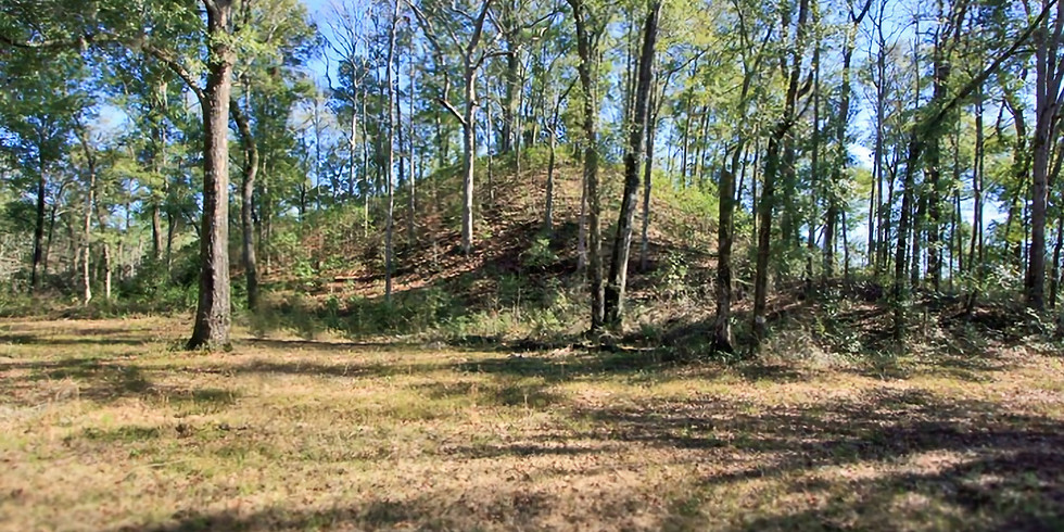 Member Meetup: Letchworth-Love Mounds