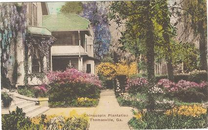 Chinquapin Postcard.jpg