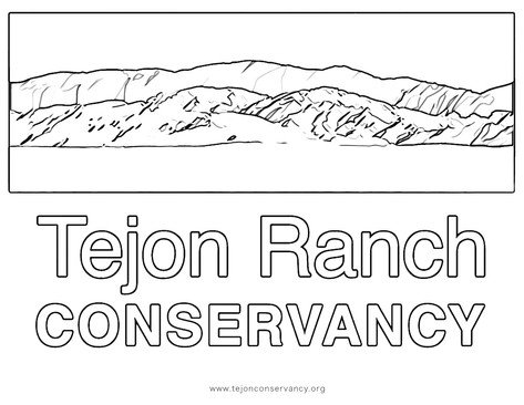 Conservancy logo Coloring Page1.jpg