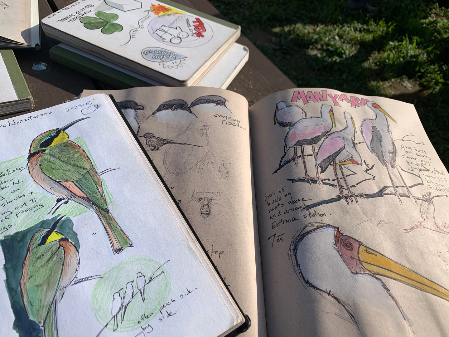 Nature Journals samles by John Muir Laws.