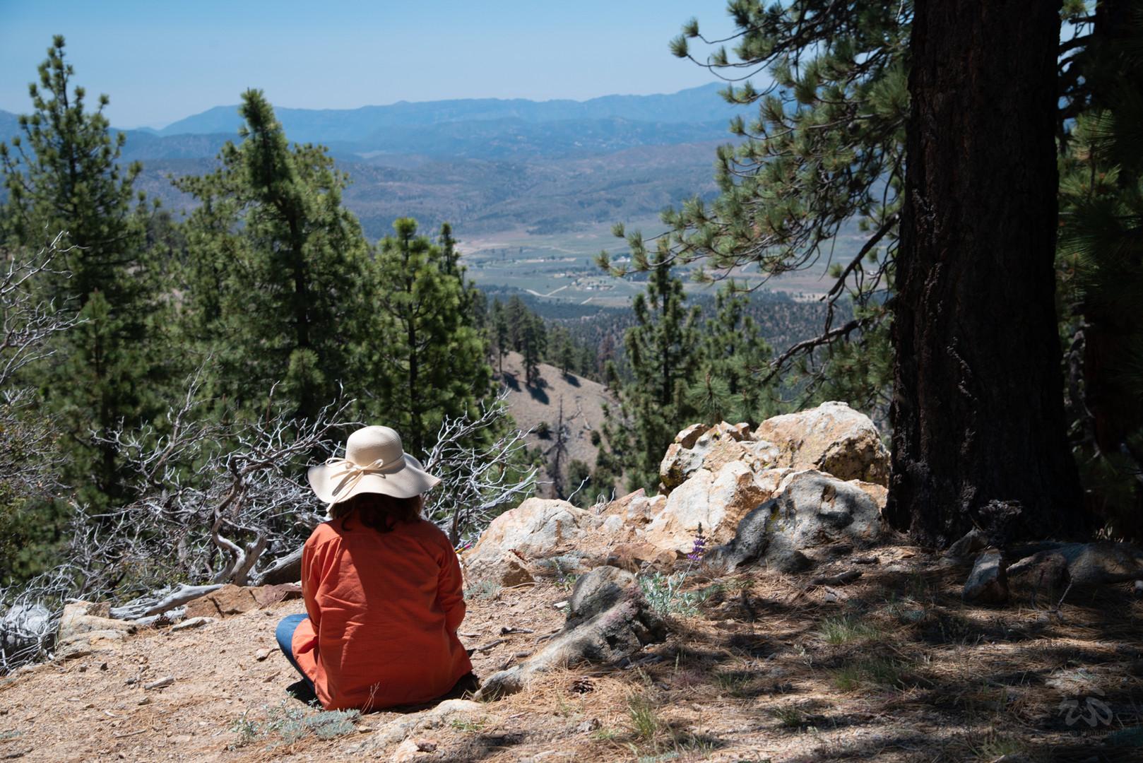Nature Journaling at Iris Point, Mt. Pinos.
