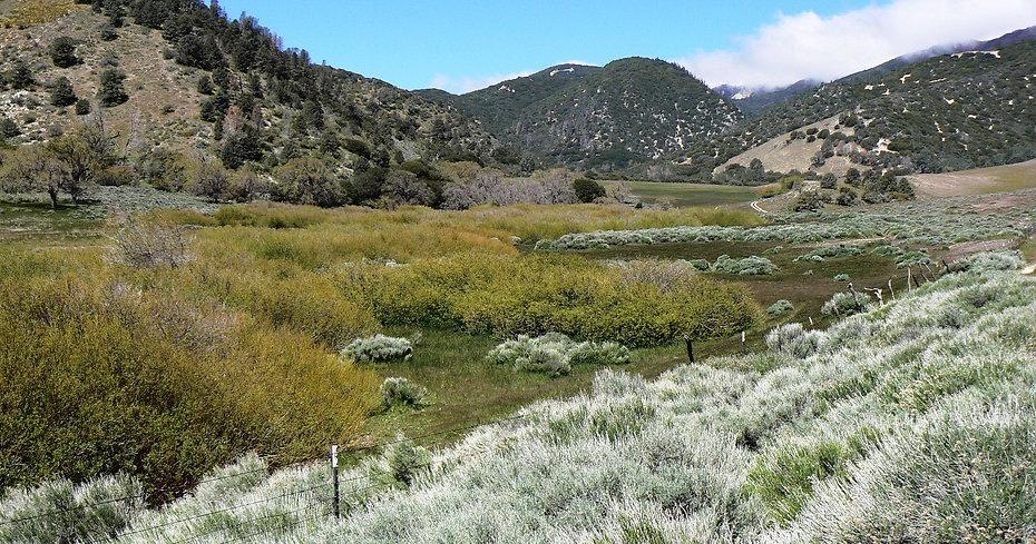 4. Sacatara Canyon Wetlands Enancement.J