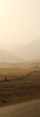 Dry hills, fields and pastures are the summer norm on much of Tejon