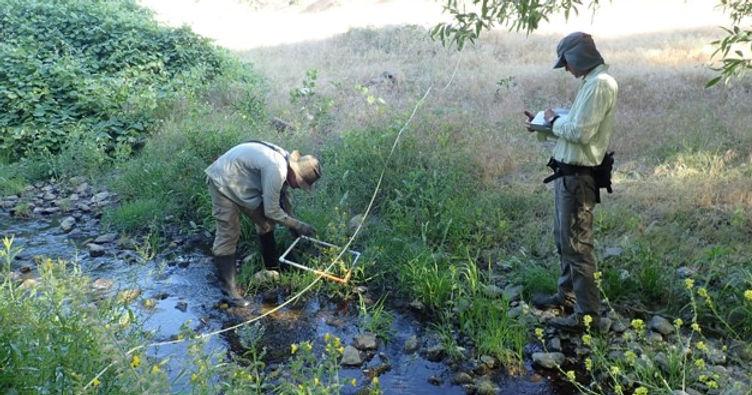 6. El Paso Creek Enhancement Area _1 of