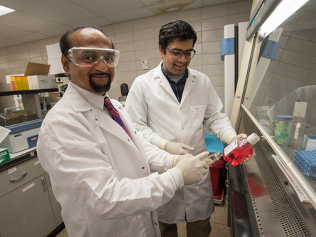 CSO Naren Vyavahare receives USD 2.2 million from NIH for nanoparticle research