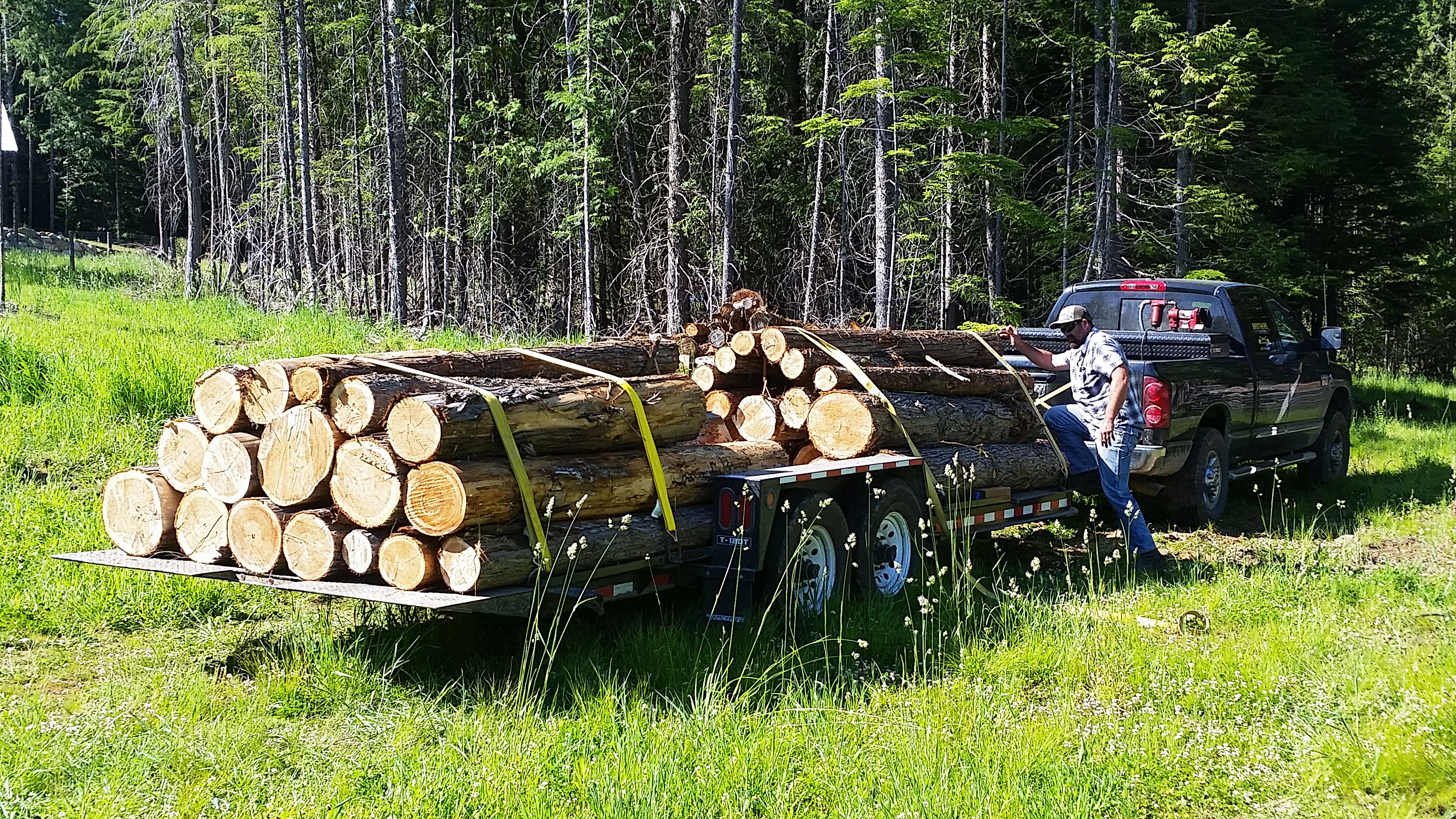Logging - Brothers Excavation