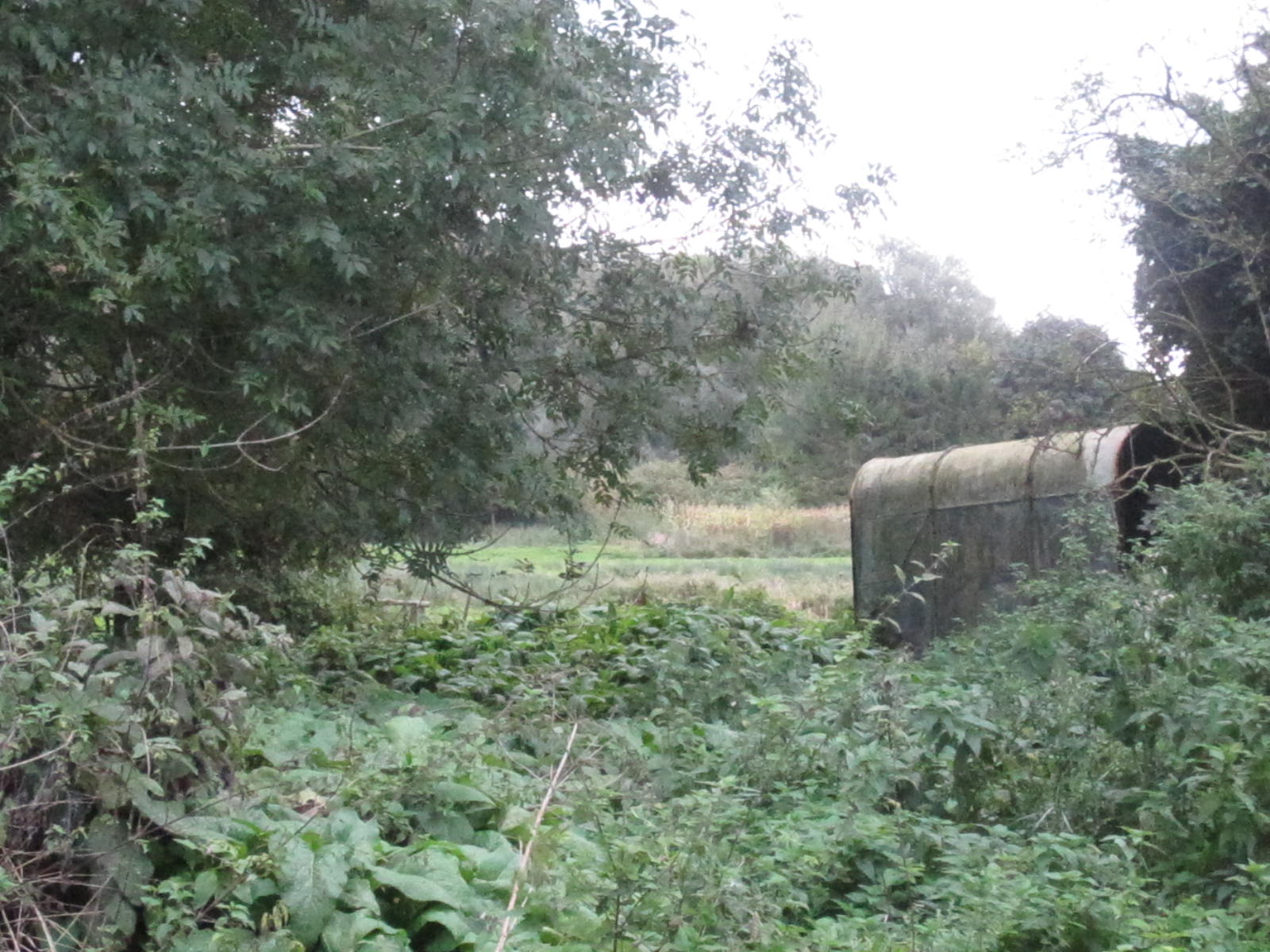 Slate Barn View