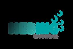 Logo_Hebing_2021_PNG.png