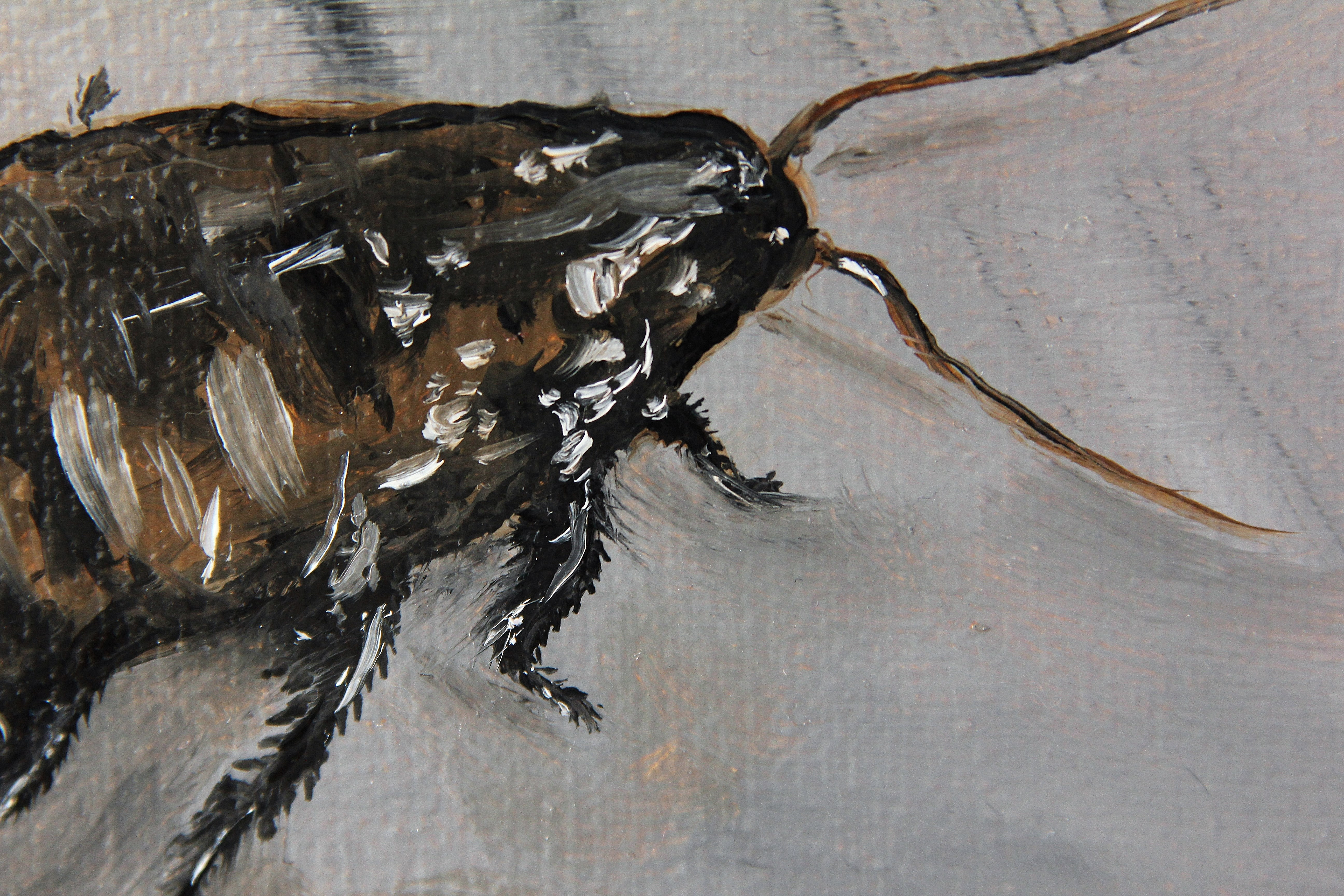 Metamorphosis Skornyakova Art 2017