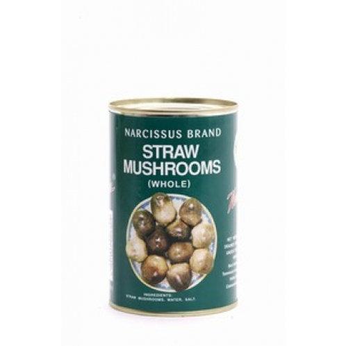Straw mushroom