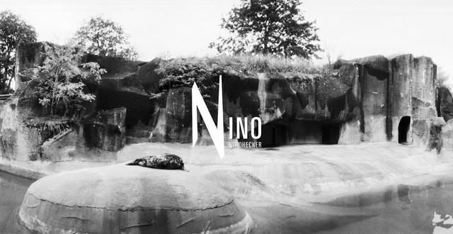 Zoo Nr07