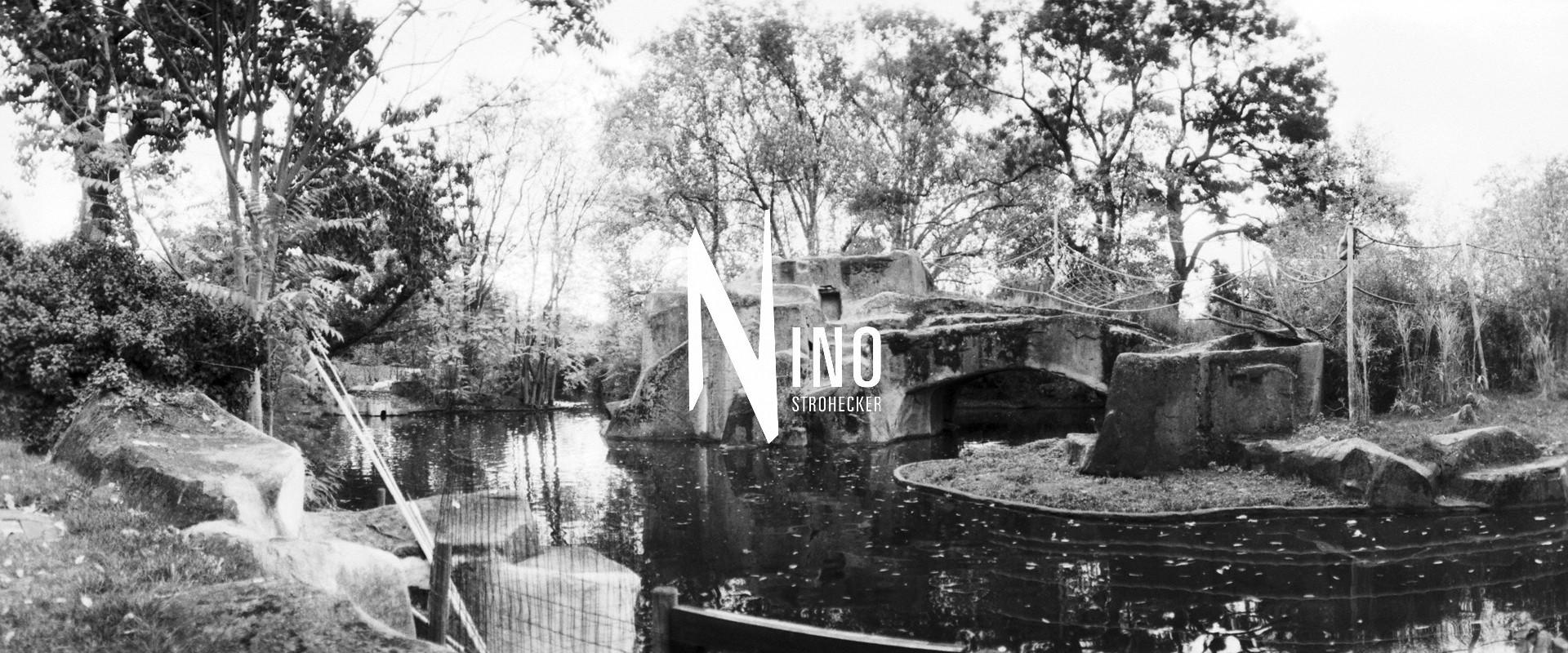 Zoo Nr19