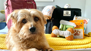 Get all your Weekender Essentials with a Waggy Caddy® Kit