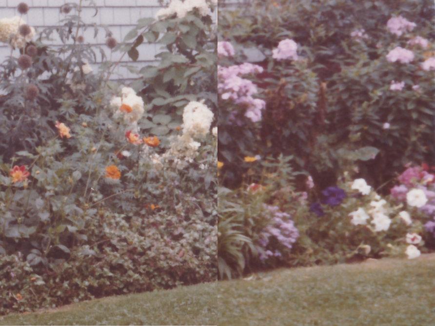 full spread flowers.jpg