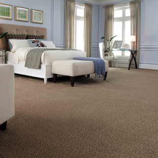 Shaw Avio carpet flooring