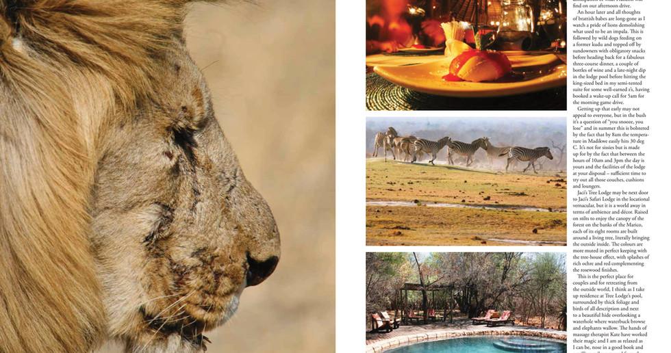 Prestige - Madikwe pg 2 - November 2012-