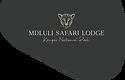 Mdluli-Logo.png