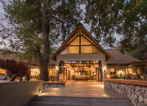 Introducing Abelana Game Reserve - Limpopo's newest Safari destination