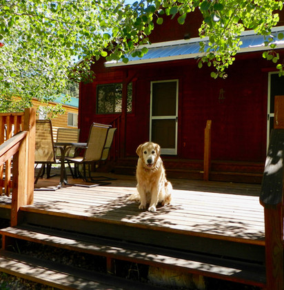 Riverside Cabin 23.jpeg