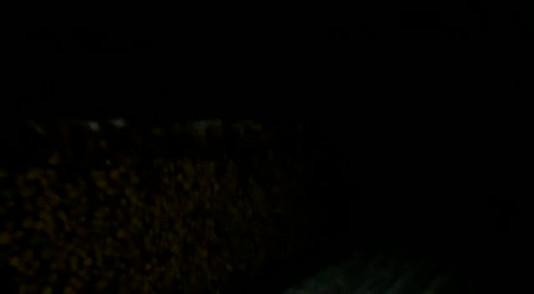Bei Nacht und Nebel noch durchs Dorf