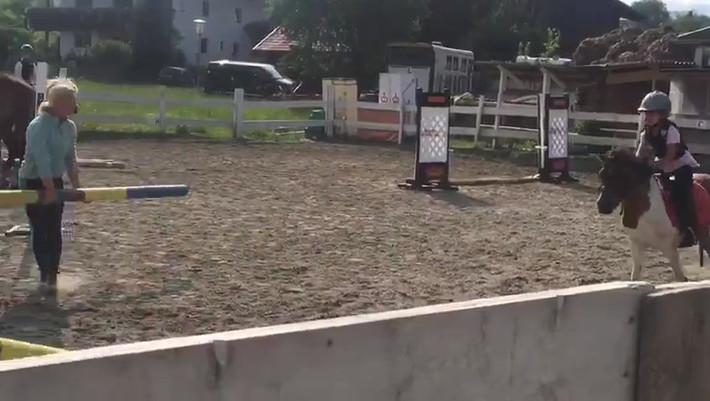 Die Kleinen können auch schon springen!