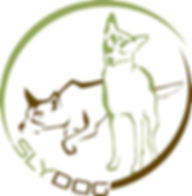 Logo SLYDOG2
