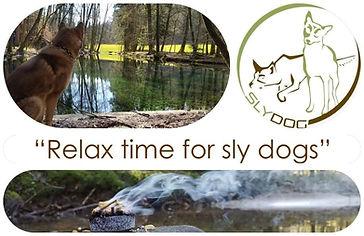 Relaxen mit Hund