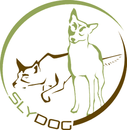 logo grün3.png