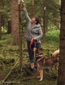 Schnitzeljagd mit Hund