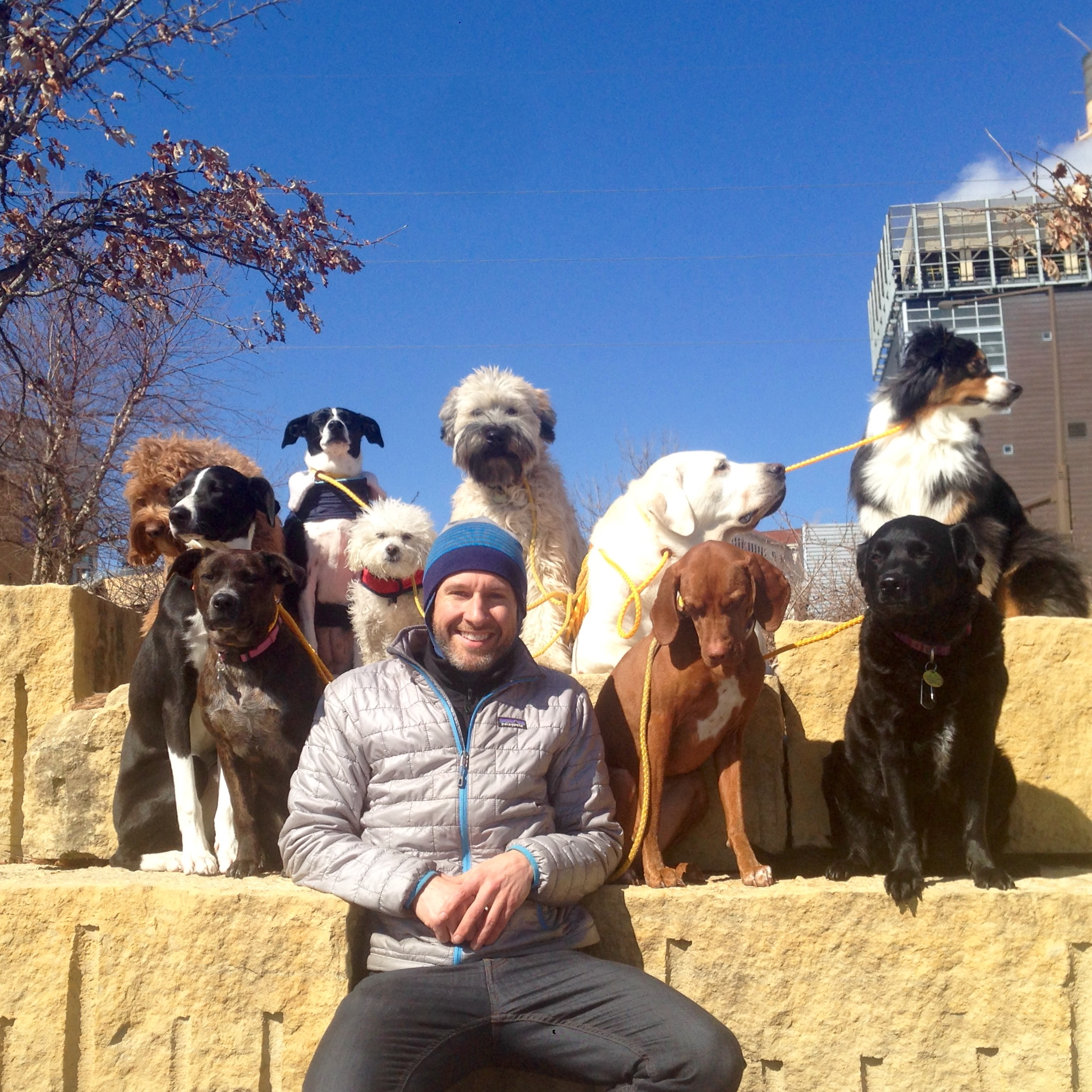 Mike & The Pups