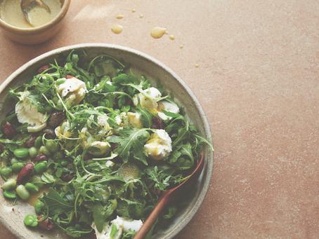 Starter: Buffalo Mozzarella, Broad Bean, Olive, Lemon and Rocket Salad