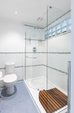 Gorgeous contemporary walk-in shower