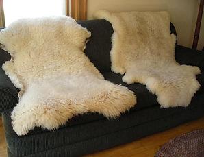 wool bats