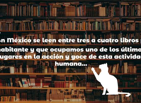"""Libros y gatos en Culiacán,"""" El Archie"""""""