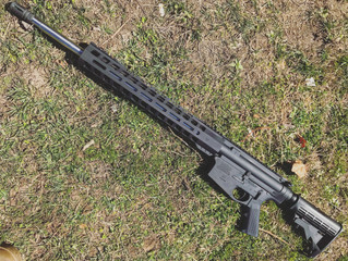For sale - Palmetto State Armory AR10 .308 - $700-750