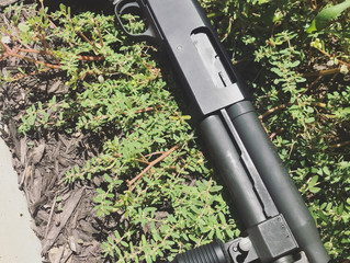 For sale - Mossberg 500 AOW 12GA - $600