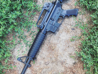 For sale - Lightly UsedBushmaster XM15 5.56/.223 - $500