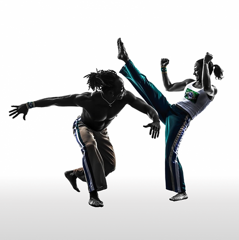 Capoeira-768x772.png