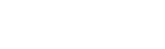 Logo mezzonet