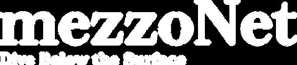 Logo mezzonet bile.png