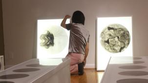 Expose Art House