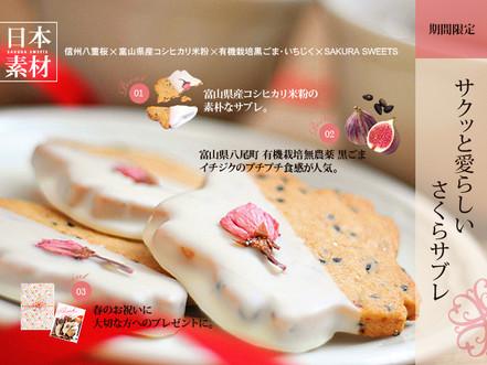 satoshi展 コラボイベント