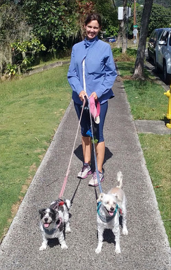 Dog Walking: Charlie and Izzy