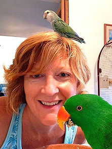 Choose Waikiki Wags for daily bird visits while you are away from home. We believe in exceptional avian care for your special bird buddies.