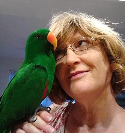 Bird Sitting: Einie