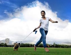 Dog Walking: Bobby