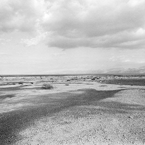 DEAD SEA-UNTITLED
