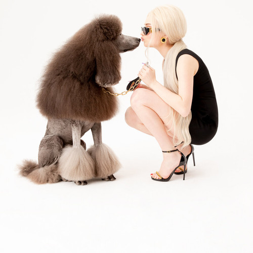 Kim_Petras_200306_Dog_Walking-1566.jpg
