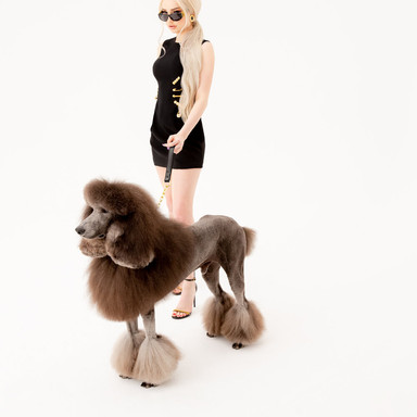 Kim_Petras_200306_Dog_Walking-1554.jpg